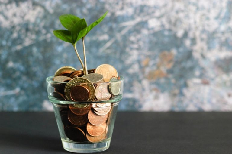 Plant growing from pot of money